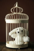 Toy rabbit in decorative cage on wooden table, on brown background — Stock Photo