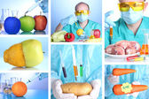 Genetic engineering laboratory. GMO food concept — Stock Photo
