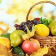 Different fruits and vegetables with yellow leaves in basket on table on bright background — Stock Photo #38595439
