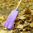 Cleaning of autumn leaves in park — Stock Photo #38595457