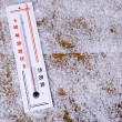 Thermometer in snow close-up — Stock Photo #38596851