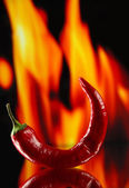 Red hot chili peppers on fire background — Stock Photo