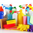 Stock Photo: Different kinds of house cleaners and colorful sponges, gloves isolated on white