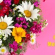 Beautiful bright flowers on pink background — Stock Photo
