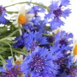 Beautiful bouquet of cornflowers and chamomiles ,isolated on white — Stock Photo #38786435