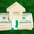 Wooden house on packs of dollars on grass close-up — Stock Photo #38813451
