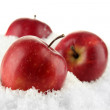 Red apples in snow isolated on white — Stock Photo