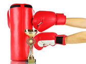 Box training and punching bag, isolated on white — Foto Stock