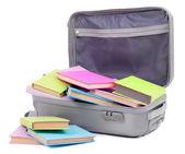 Valigia con libri isolato su bianco — Foto Stock