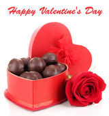 Bonbons au chocolat en boîte de cadeau, isolés sur blanc — Photo