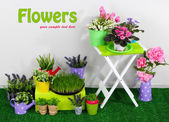Color crate and table with decorative elements and flowers standing on grass — Stock Photo
