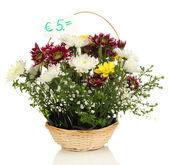 Satılık beyaz izole taze çiçek buketi — Stok fotoğraf