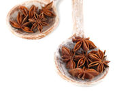 Star anise in wooden spoons, isolated on white — Stock Photo