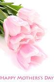 Splendido bouquet di tulipani rosa, isolate su bianco — Foto Stock