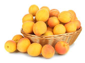 Fresh natural apricot in wicker basket isolated on white — Stock Photo