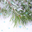 Frozen spruce branches on snow close up — Stock Photo #39042045