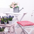Stock Photo: Garden chairs and table with flowers on wooden stand on white background