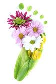 Ayak yaprakları ve çiçekleri beyaz izole — Stok fotoğraf