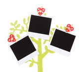 Holder in form of tree with instant photo cards isolated on white — Stock Photo