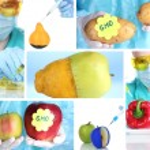 Genetic engineering laboratory. GMO food concept — Stock Photo #39160561