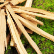 Stock Photo: Stack of firewood on grass close up