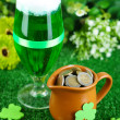 Glass of green beer and pitcher with coins on grass close-up — Stock Photo #39281331