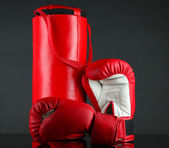 Boxing gloves and punching bag, isolated on black — Foto Stock