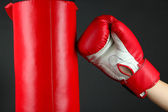 Box training and punching bag, isolated on black — Stok fotoğraf