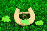 Horseshoe and clover on grass close-up — Stock Photo