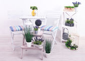 Garden chairs and table with flowers on wooden stands on white background — Stock Photo