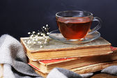 Cup of hot tea on books with plaid on table on dark background — Stock Photo