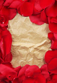 Frame of rose petals on vintage paper background close-up — Stock Photo