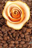 Decorative roses from dry orange peel on coffee beans — Stock Photo