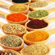 Assortment of spices in wooden spoons — Stock Photo #39500329