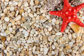 Small sea stones and shells, close up — Foto Stock