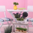 Stock Photo: Garden chairs and table with flowers on wooden stand on pink background
