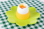 Boiled egg in egg cup on table close-up — Stock Photo