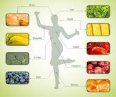 Collage de los alimentos más útiles para el ser humano — Foto de Stock