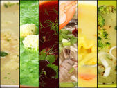 Collage of various soups — Stock Photo