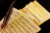 Musical notes and feather — Stock Photo
