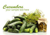 Fresh cucumbers, pickles and dill isolated on white — Stock Photo
