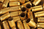 Shotgun cartridges close-up background — Stock Photo