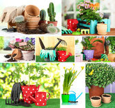 Collage of gardening closeup — Stock Photo