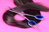 Long brown hair with scissors on pink background — Stok fotoğraf
