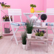 Stock Photo: Garden chairs and table with flowers on shelves on pink background
