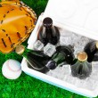 Stock Photo: Ice chest full of drinks in bottles on grass background
