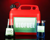 Bio fuels in canister and vials on red background — Stock Photo