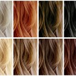 Stock Photo: Hair Color Samples