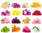 Flower bouquets isolated on white — Stock Photo