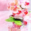 Composition with beautiful blooming orchid with water drops and spa stones, on light color background — Stock Photo #40591145